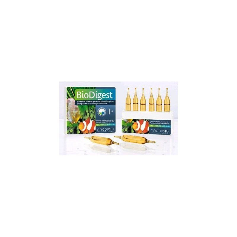 BACTERIAS BioDigest (1) Ampolla de Cultivo de bacterias concentrado