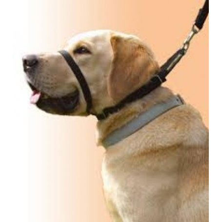 Collar Canny Nº6 de manejo para perros rebeldes