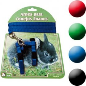 Arnes + Correa De Conejo Enano Azul
