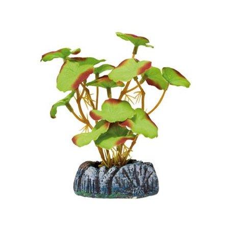 Planta Seda Nenufar PequeñA 10,5Cm