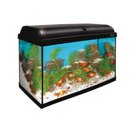 Kit Acuario Aqua Light 80 Litros