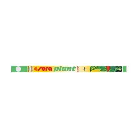 SERA PLANT COLOR 15W