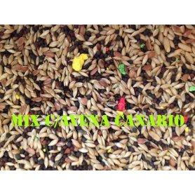 Mixtura Canarios Con Avena A Granel 1Kg