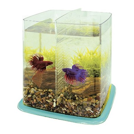 Betta Battle Paradise 6,4 Litros Azul