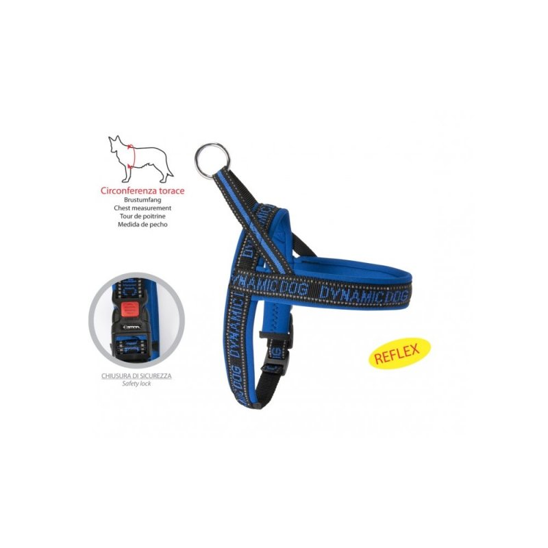 Arness Neopreno Dynamic Blue 45 Cierre Seguridad