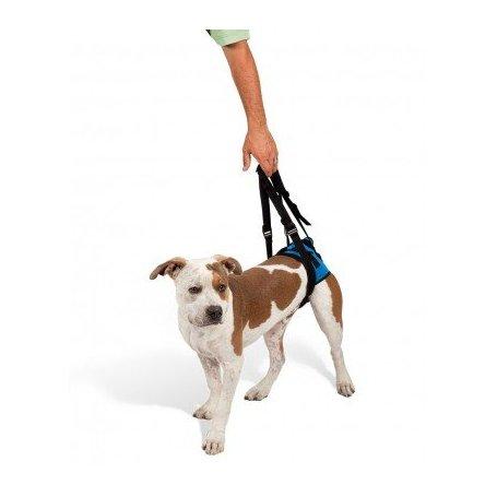 Arnes Para Perros Sin Movilidad Trasera M 46-58Cm