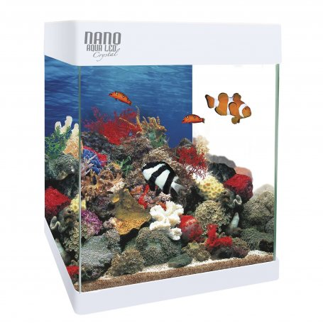 Kit Nano Aqualed 20 Litros, Acuario Con Elegante DiseñO Cuadrado