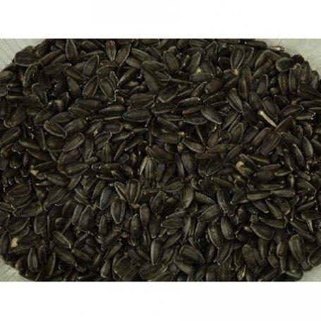 Piensur Pipa Negra De Girasol 30Kg Lote: 1-270420-7456/1