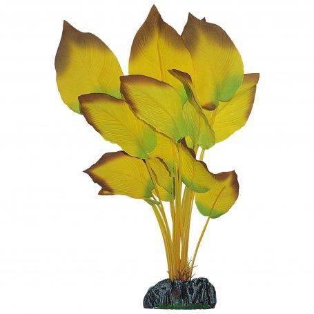 Planta Anubia Amarilla 14Cm para decoracion de acuarios de agua dulce y peces tropicales