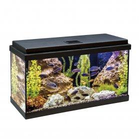Acuario Kit Completo 60 Litros Tapa Negra Aqua-Led