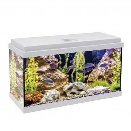 Acuario Kit Completo 60 Litros Aqua-Led Tapa Blanca
