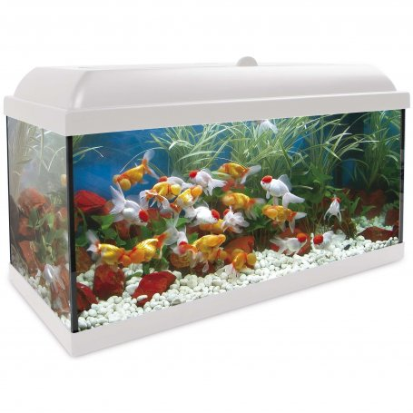 Acuario Kit Completo 100 Litros Aqua Led Filtro Int. Optimus