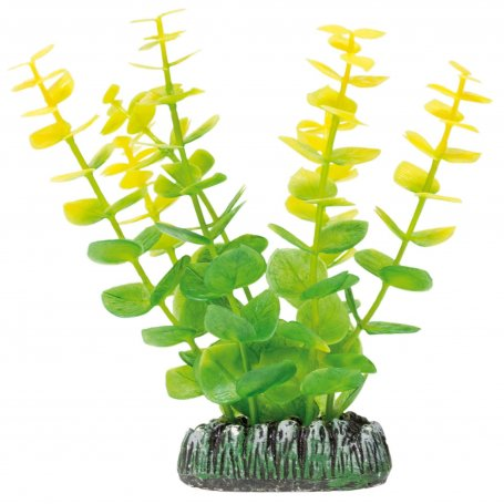 Planta Plastica Bacopa Amarilla 8,5Cm