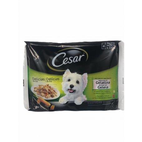 Cesar Multipacks Puch Delicias Del Dia Gelatina 4 X 100Gr alimento complementario apra gatos