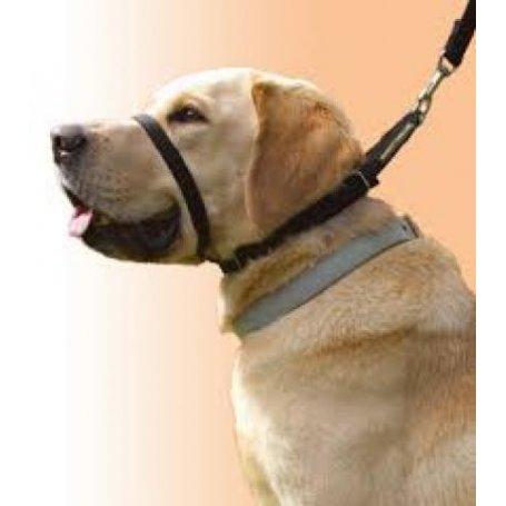 Collar Canny Nº4 de manejo para perros rebeldes