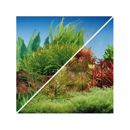 Fondo papel 49cm reversible Tronco-Plantas