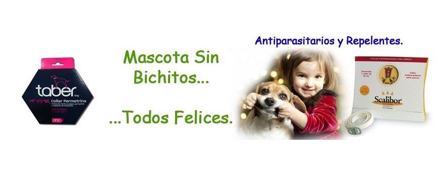 Antiparasitarios para perros | Aquarium Terramar