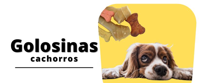 Golosinas para cachorros