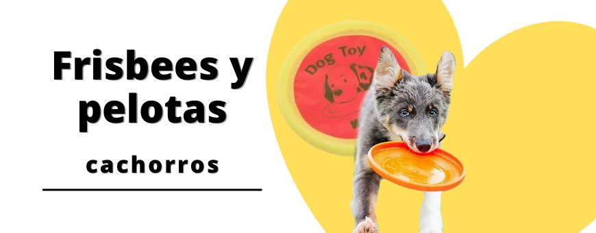 Frisbees y pelotas