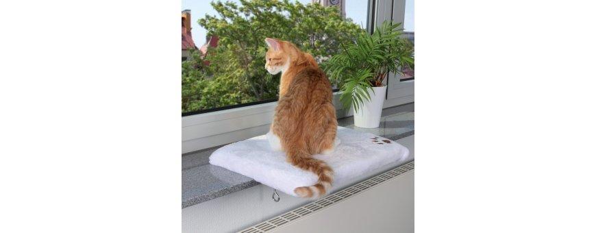 Colchones para gatos