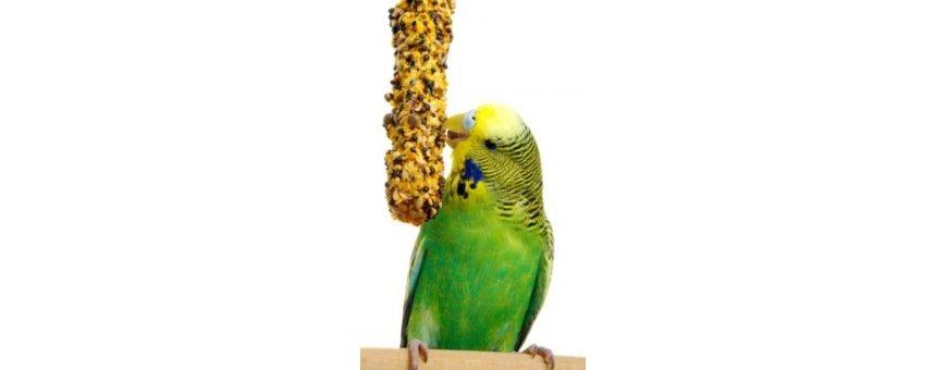 Alimento completo y complementario para nuestra pájaro.