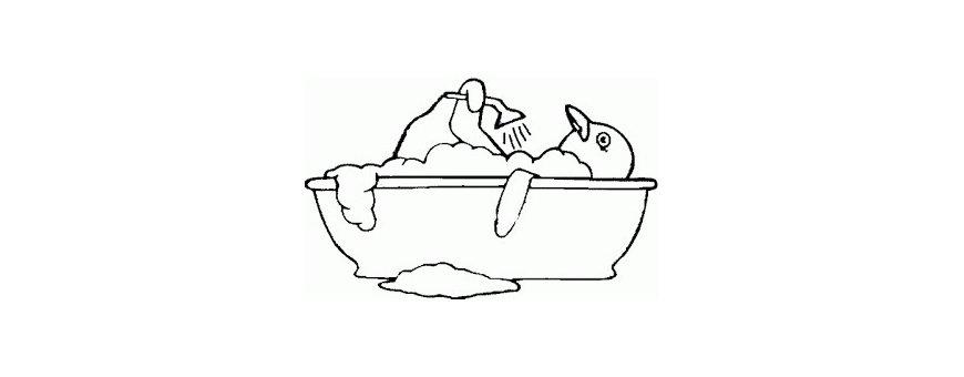 Salud e higiene