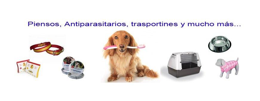 Sección de perros; Pienso, collares, correas, antiparasitarios y más..