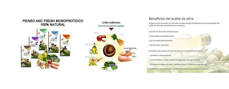 Alimento Monoproteico - Pienso Para Perros Anc Fresh 20% carne fresca