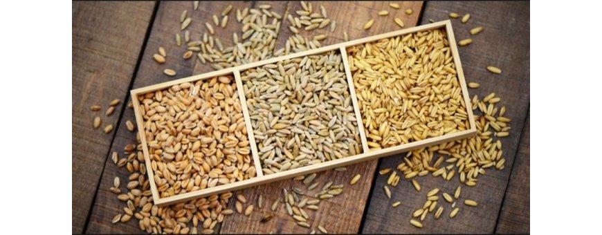 Alimento y grano para animales de granja, gallinas, pavos, ocas y otros
