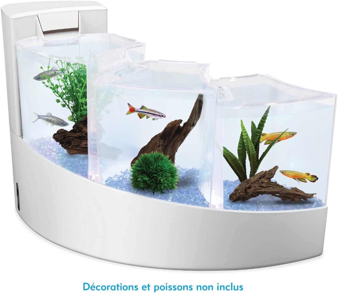 El acuario aquafalls es muy elegante, se puede convertir en el acuario perfecto para regalar estas navidades, para la primera comunión y para cumpleaños.