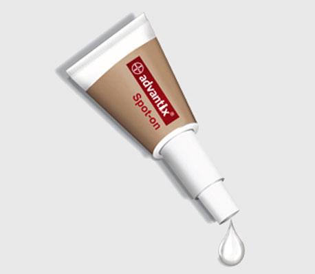 pipeta advantix de bayer para combatir la picadura del mosquito de la lismania