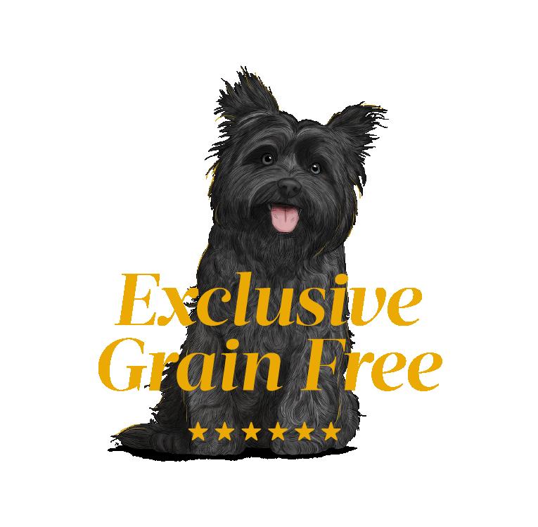 Alimentación para perros La calidad es el eje central de GOSBI y está presente en cada uno de los pasos del proceso productivo.
