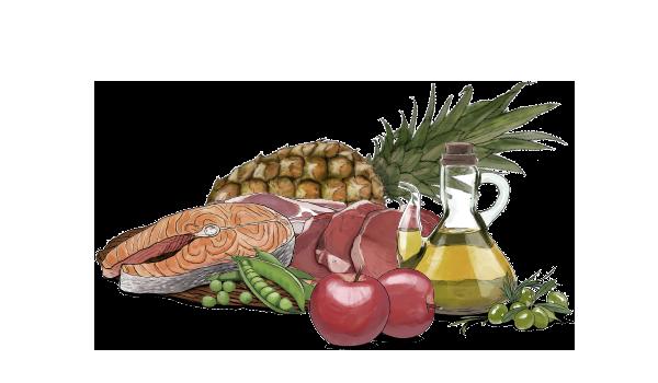 La calidad del pienso gosbi destaca por los ingredientes naturales que contiene