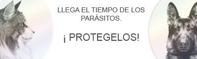 LOS MEJORES PRECIOS EN ANTIPARASITARIOS, COLLAR SERESTO, SCALIBOR, PREVENDOG