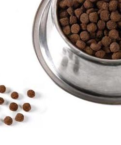 comedero metálico con pienso picart para tu perro.