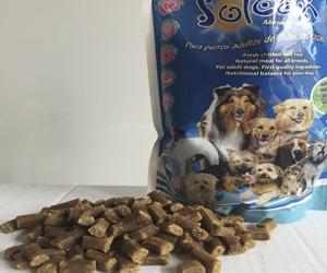 solcan comida natural para perros